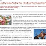 builder blogging